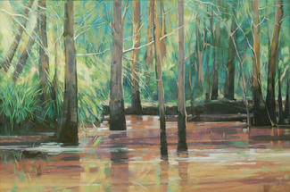 Cattai Wetlands restored to Life, 1st prize Great Lakes Art Exhibition, 91 x 61 cm