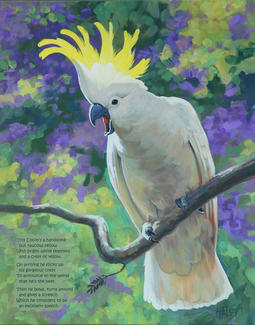 Sulphur-crested Cockatoo with text 40 x 50 cm