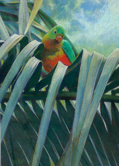 Young King Parrot in Palm SOLD  20 x30cm